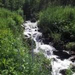 Cartwrights Creek